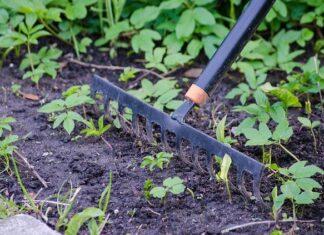 Prace ogrodnicze i akcesoria wykorzystywane podczas nich